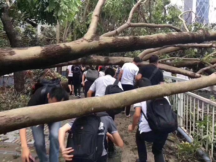 台风天,大风大雨怎么能阻挡深圳人民上班的热情?